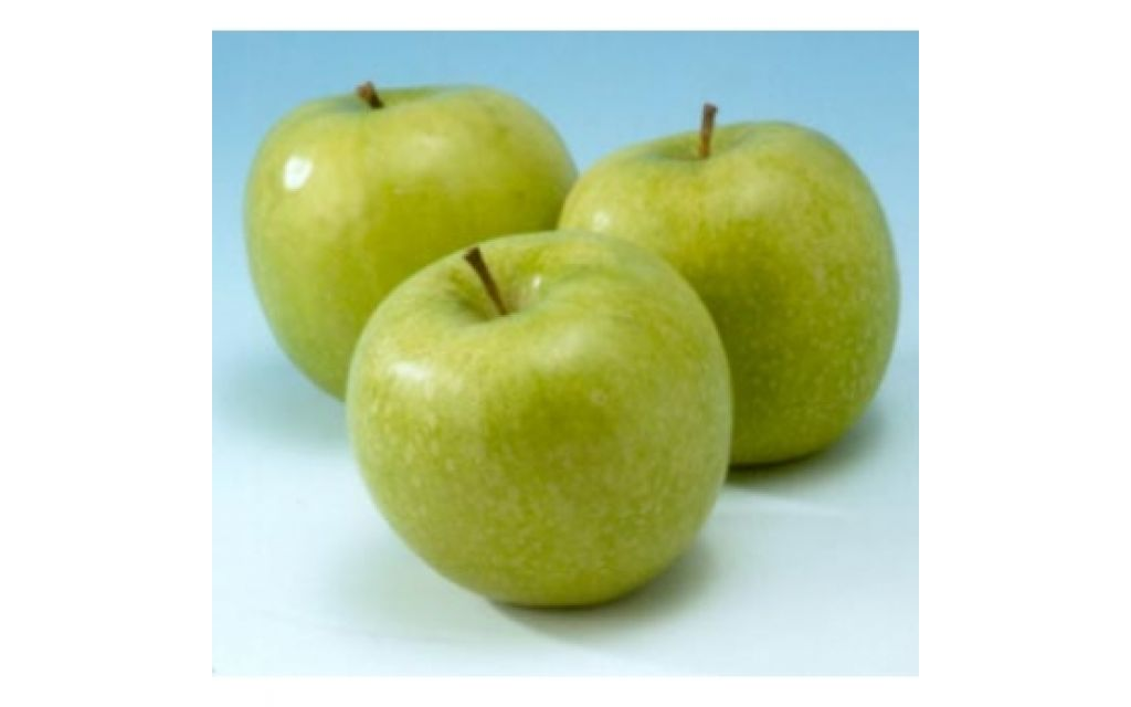 Malus d Granny smith - handappel